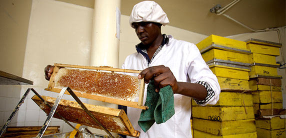 CSV Prize winner Honey Care Africa